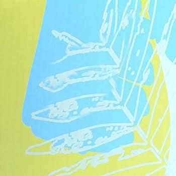 Vivaglory Solide Chat Griffoir Boîte, DIY Maison Griffoir pour Chat avec Fond Scellé, Anti-dérapant Griffoir Carton Ondulé pour Grand Chat, Taille 43 * 28 * 20cm, Feuille
