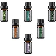 Regalo top 6 aceites esenciales básicos de grado terapéutico para aromaterapia 100% puros set 6x10ml de Wasserstein (lavanda, árbol del té, eucalipto, citronela, naranja, menta)