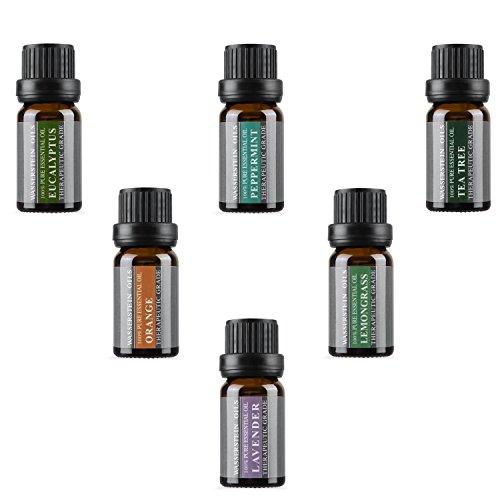 Die Top 6 Aromatherapie Öle - 100% reine ätherische Öle in einem Geschenkset 6 x 10 ml von WASSERSTEIN (Lavendel, Teebaum, Eukalyptus, Zitronengras, Orange, Pfefferminze)