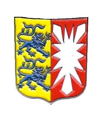 Preisvergleich Produktbild Pin Anstecker Schleswig Holstein Wappen