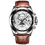 Binger Moon Phase Luminous Waterproof Mechanical Wrist Watch for Men - B1189-Silver Brown