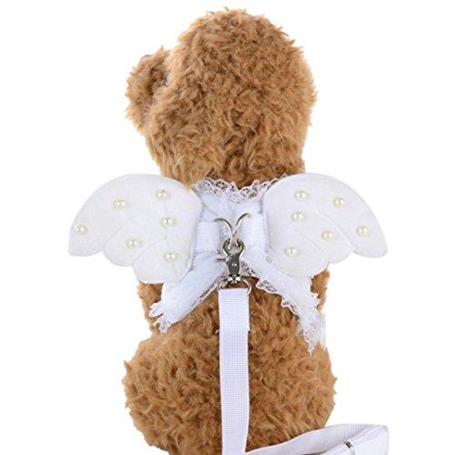 nsportseil, Upxiang kleine Haustier Designer Flügel Brustgurt Kragen Satz, nette Spitze Engels Perlen Flügel Brust Rückengurt Transport Seil, Hundeleinen (S/13.78 '', Weiß) (Engel Haustier-welt)