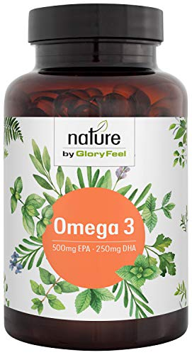 Omega-3 Fischöl Kapseln 1000mg - Hochdosiert mit 500mg EPA und 250mg DHA pro Softgel - Essentielle Omega-3 Fettsäueren - Premium Fischöl aus Anchovis - Laborgeprüfte Herstellung in Deutschland - Omega 3 Dha Kapseln