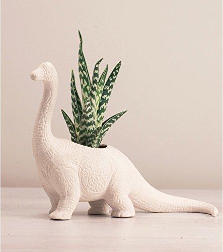 Bitten Dinosauro plantosarus