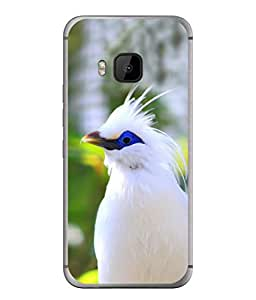 PrintVisa Sponsor A Bird High Gloss Designer Back Case Cover for HTC One M9 :: HTC One M9S :: HTC M9