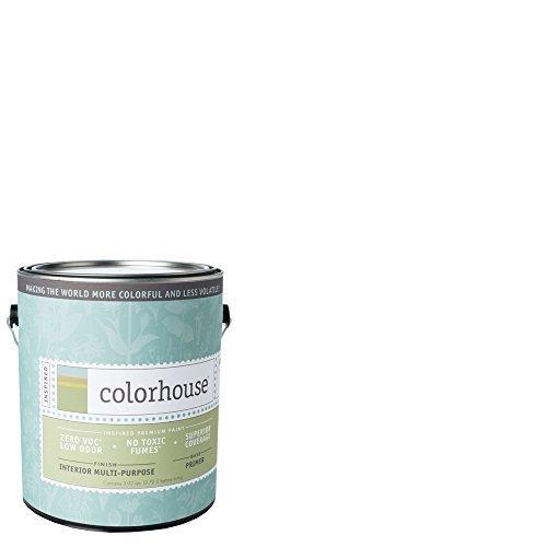 inspired-interior-multi-purpose-primer-gallon-by-colorhouse