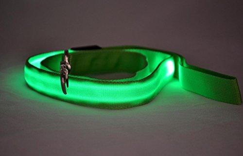 Maycong Hunde Geschirre LED Leuchtende Reflektierende Sicherheitsleine USB Wiederaufladbar für Nachtsichtbarkeit (grün)