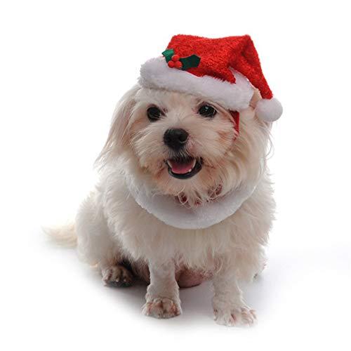 LnLyin Pets Weihnachten Ornamente Weihnachten Schal und Mütze Katze Hund Weihnachten verkleiden Sich Puppy Cat Weihnachtskostüm, M -