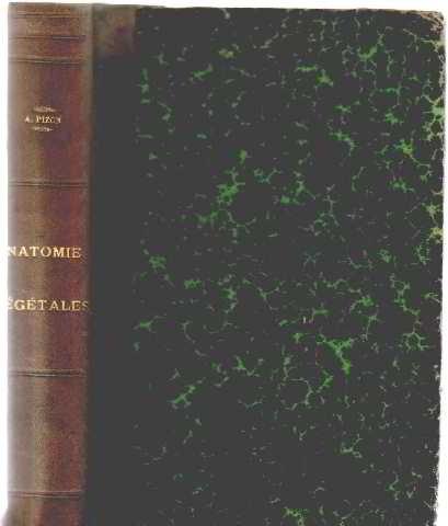 Anatomie et physiologie végétales, suivie de l'étude élémentaire des principales familles, de la bactériologie et des fermentations