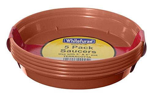 Whitefurze G04118 Lot de 5 soucoupes pour pot de fleurs Couleur terre cuite 12,7/15 cm