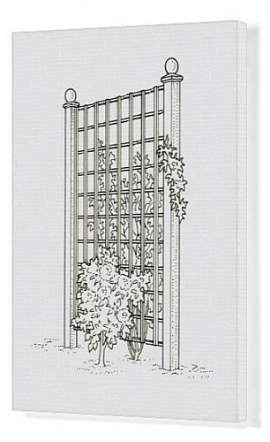 canvas-print-of-black-and-white-illustration-of-plants-growing-on-both-sides-of-trellis-fence