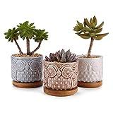 ComSaf Planta Maceta de Suculento Blanco 8.5CM Paquete de 3, Cactus Maceteros de...