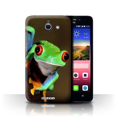 Stuff4 Hülle / Hülle für Huawei Ascend Y550 LTE / Frosch Muster / Wilde Tiere Kollektion