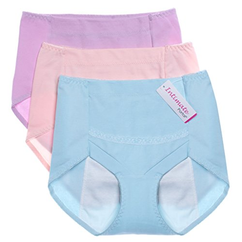 69129a31b19c1 Intimate Portal Women Secret Agent Leak Proof Protective Briefs Period  Knickers From Intimate Portal