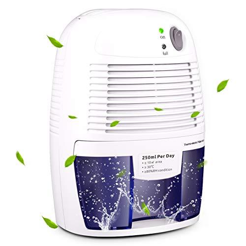 VicTsing Luftentfeuchter, 500ml Tragbarer Entfeuchter Mini gegen Feuchtigkeit Raumentfeuchter Elektrisch mit Luftreinigungsfunktion Dehumidifier für Schlafzimmer, Wohnung, Küche, Büro, Schrank Bad usw