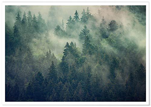 Panorama® poster stampe da parete foresta con nebbia 30 x 21 cm | stampato su carta 250 gr alta qualità con passepartout | quadri moderni soggiorno | stampe da parete moderne | decorazione parete