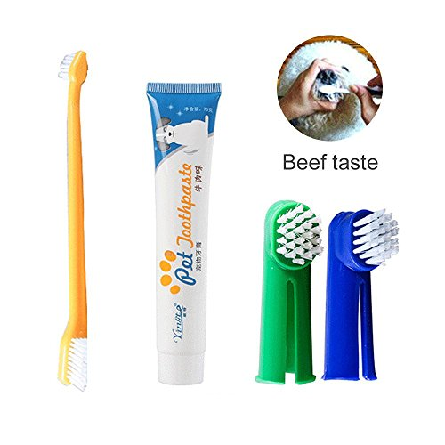 Kobwa - Kit higiene dental mascotas cepillo dientes