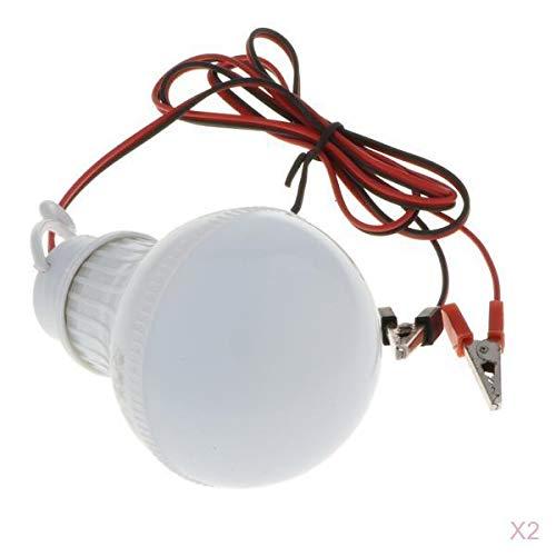 T TOOYFUL 2 Stück Glühbirne Lampe Stirlingmotor Ersatz Labor Experiment Zubehör - Glühbirne Experiment