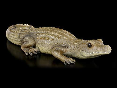 Figuren Shop GmbH Gartenfigur - Krokodil Baby | Tier-Figur, handbemalt