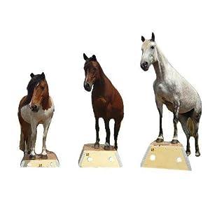 Time4Horses Pferd Pferde Podest Pferdepodest Bodenarbeit Zirkus Podest Zirkuspodest