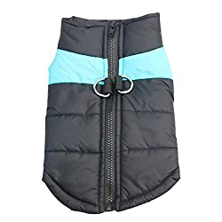 Idepet TM Pet Dog Winter Coat Waterproof Clothes for Pet Dog Cat (M, Blue)