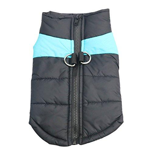 Idepet Haustier Hund Warm Mantel Jacke Wasserdichte Kleidung Kleine mittlere große Haustier Hund Katze Bekleidung Bekleidung Frühling Herbst Winter- (XL, Blau)