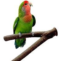 Soporte de madera para jaula de pájaros, loros, periquitos, cacatúas, agapornis