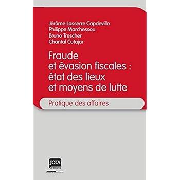 La Fraude et l'évasion fiscale : état des lieux et moyens de lutte