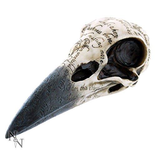 Cráneo de cuervo