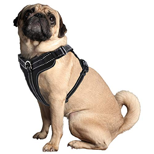 PetCay Hundegeschirr Schwarz Gepolstert | Anti Zug Sicherheitsgeschirr Brust-Geschirr No Pull Verstellbar aus Nylon für Kleine, Mittlere & Große Hunde | Reflektierend, Weich & Atmungsaktiv - Welpen Geschirre