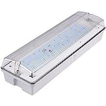 Biard Lampada Rettangolare di Emergenza a LED 7W - Blanco Freddo - Luce di Sicurezza - Ciclo di Vita 25000 Ore - Ideale per Uffici e Aziende - Risparmio Energetico