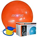 Cockatoo Anti-Burst Gym Ball (55 cm to 95 cm) with Foot Pump, Exercise Ball