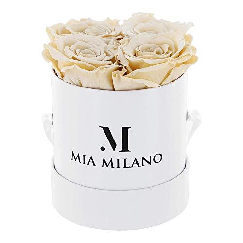 Mia Milano ® Rosenbox mit 4 Infinity Rosen | Flowerbox Geschenkbox zum Muttertag | konservierte Blumen 3 Jahre haltbar (Weiß - Champagner) weißerosen champagnerrosen rosenweiß