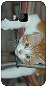Timpax protective Armor Hard Bumper Back Case Cover. Multicolor printed on 3 Dimensional case with latest & finest graphic design art. Compatible with HTC M9 Design No : TDZ-27256