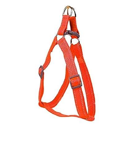Ularma Harnais nylon chien colliers pour animaux de compagnie se peloter poitrine Traction arrière (30-50cm, orange)