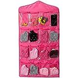 BRANDER-16 Pockets Multifunction Space Save Door Wardrobe Hanging Bags Rack Wall Hanger Socks Storage Organizer [Colour-Pink]