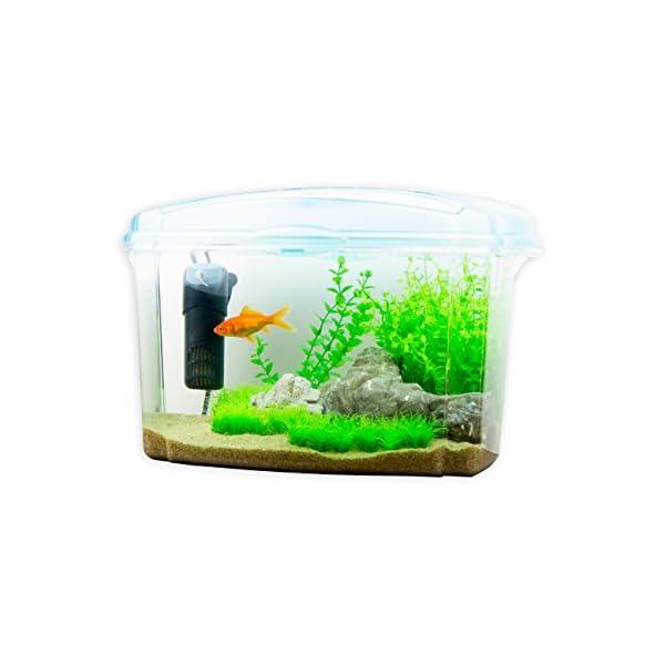 Interpet Plastic Fish Tank Aquarium for Goldfish, 18 Litres
