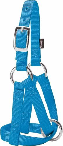 Weaver Leder Ziege Halfter, Hurricane klein, blau/3/4-Zoll von Weaver Leder