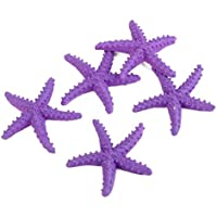 5x Miniatura Stelle Marine Viola Micro Paesaggio