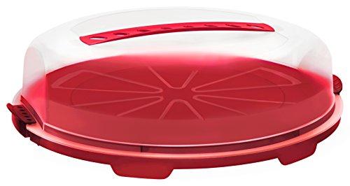 """Rotho Tortenglocke """"Fresh"""" flach - Kuchen-Transportbox aus Kunststoff (PP), mit sicherem Verschluss und bequemem Tragegriff, spülmaschinengeeignet - rot/transparent, ca. 35,5x34,5x11,6 cm (LxBxH)"""