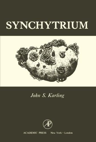 Synchytrium