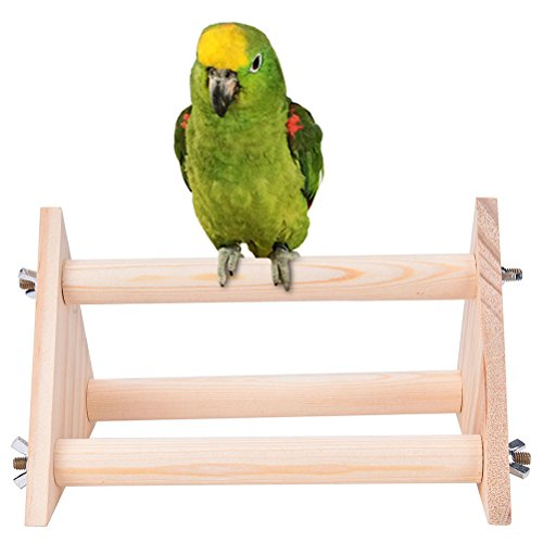 twinkling-stars-bird-stand-perch-parrot-macaw-budgies-table-training-perch-stand-toy