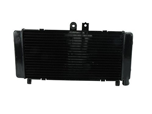 Price comparison product image Cooler Radiator Honda CB600F Hornet PC34 PC36 1998-2006