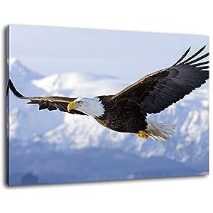 Adler fliegt über Schneebedeckte Berge, Leinwand Bild, Format:80x60 cm, Bild auf Leinwand bespannt, riesige XXL Bilder komplett und fertig gerahmt mit Keilrahmen, Kunstdruck auf Wand Bild mit Rahmen, günstiger als Gemälde oder Bild, kein Poster oder Plakat