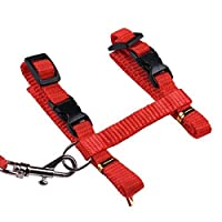 Mumoo Bear Adjustable Harness and Leash Collar with Lead for Cat and Small Pets- RED