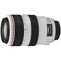 Canon Obiettivo, EF 70-300 mm f/4-5.6L IS USM [Versione Canon Pass Italia]