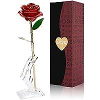 Erduo Love Forever Long Stem 24K Gold Foil Trim Rose Flower con Soporte para el Día de San Valentín y Día de la Madre y Aniversario y cumpleaños