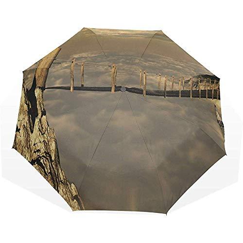 Ombrello pieghevole da viaggio ponte sospeso pericoloso 3 ombrelli artistici pieghevoli ombrello da viaggio ragazzo ombrello da pioggia bello