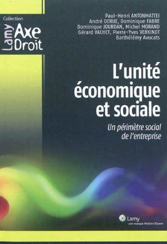 L'unité économique et sociale: Un périmètre social de l'entreprise par Paul-Henri Antonmattei
