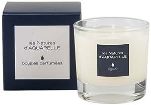 Aquarelle Bougie Parfumée Figuier 30 g